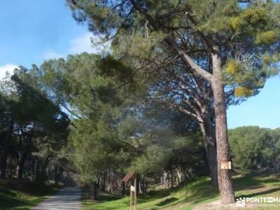 Hoyo de Pinares;Valle de la Pizarra y los Brajales-Cebreros;cueva del reguerillo tetas de viana vian